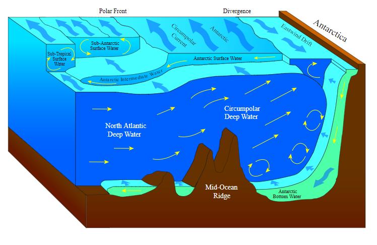 OceanProcessesSim1